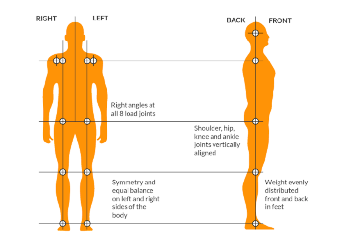 Front and side view of ideal body alignment